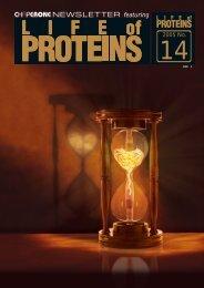 ダウンロード(2.5MB) - 特定領域研究「タンパク質の社会 - 東京工業大学