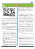 Primeira Etapa - Page 5