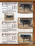Simmental Sale - Cow Camp Ranch - Page 7
