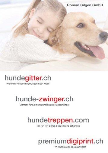 Roman_Gilgen_GmbH.pdf