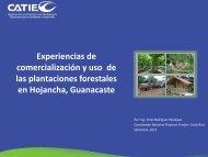 comercialización y uso de las plantaciones forestales en Hojancha Guanacaste