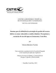 Percepciones y escenarios de uso del agua en Guanacaste ... - Catie