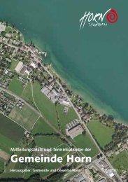 Mitteilungsblatt 01/2010 - in der Gemeinde Horn