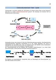 Carbonsäurederivate: Fette - Lipide