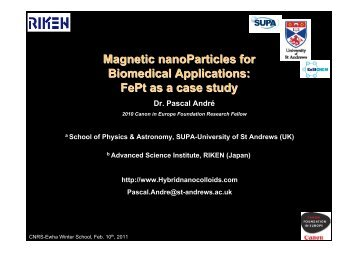 Magnetic nanoParticles for Biomedical Applications FePt as a case study