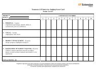Tennessee 4-H Interview Judging Score Card Senior Level I