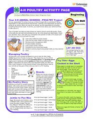4-H POULTRY ACTIVITY PAGE