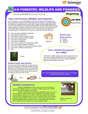 4-H FORESTRY WILDLIFE AND FISHERIES wildlife resources mature similarities