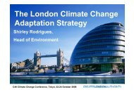 The London Climate Change Adaptation Strategy