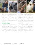 Animal Reiki Practitioner Guidelines and Code of Ethics - Page 3