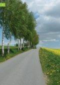 Jahresbericht 2011 - Deutsches Biomasseforschungszentrum - Seite 4