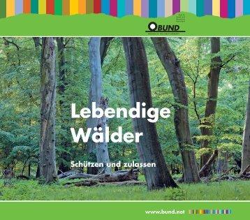 Lebendige Wälder - BUND für Umwelt und Naturschutz Deutschland