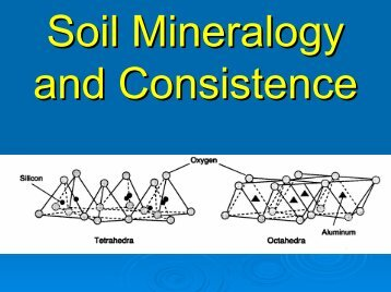Soil Mineralogy and Consistence