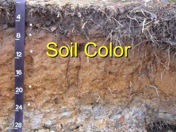 Soil Color