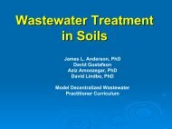 Wastewater Treatment in Soils