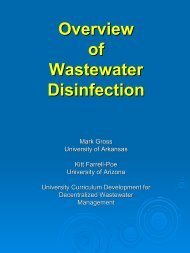 Overview of Wastewater Disinfection