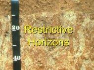 Restrictive Horizons