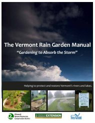The Vermont Rain Garden Manual