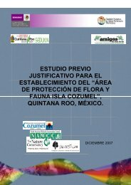 área de protección de flora y fauna isla cozumel - Instituto de ...