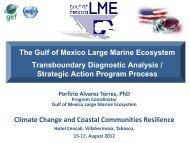 Gulf of Mexico Large Marine Ecosystem - Instituto de Ciencias del ...