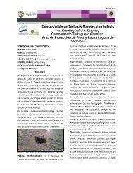 Área de Protección de Flora y Fauna Laguna de Términos