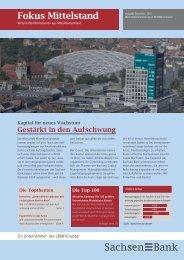 Fokus Mittelstand: Ausgabe Dezember 2010 - Sachsen Bank