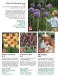 Bulb - Veseys - Page 5