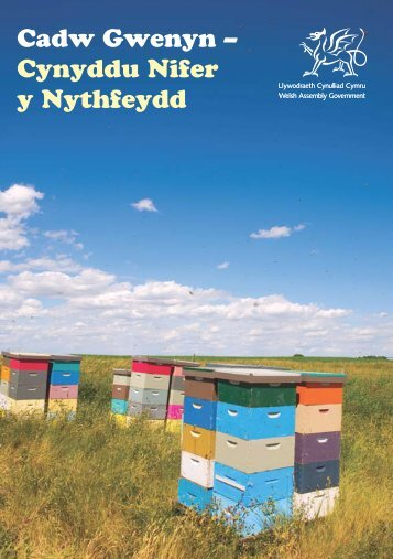 Cadw Gwenyn – Cynyddu Nifer y Nythfeydd