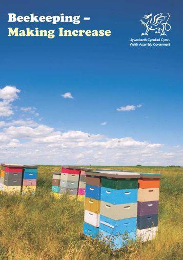 Beekeeping – Making Increase