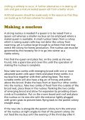 Beekeeping – Making Increase - Page 6