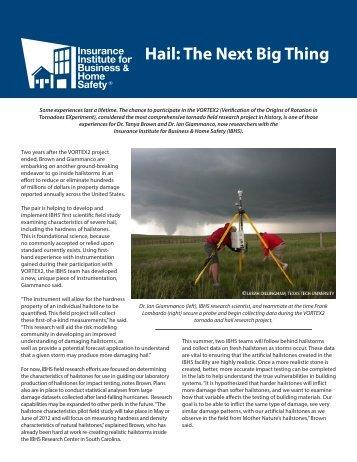Hail The Next Big Thing