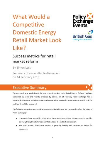 What Would a Competitive Domestic Energy Retail Market Look Like?