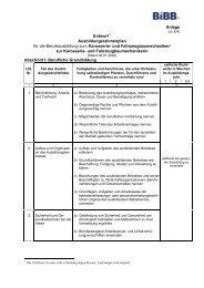 Anlage Entwurf 1 Ausbildungsrahmenplan für die ... - BiBB