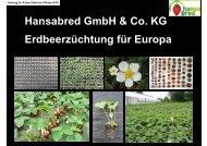 Hansabred GmbH & Co. KG Erdbeerzüchtung für Europa - Bioland