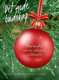Med ønsker om en velsignet julehøytid