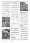 BETON - Page 7