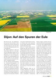 Dijon: Auf den Spuren der Eule - AOPA - Germany