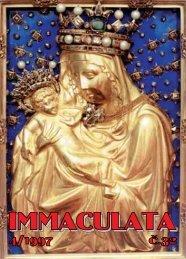Pomoc při vážné dopravní nehodě - Immaculata - Minorité
