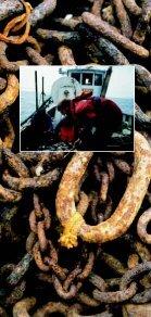 Danish Directorate of Fisheries - Page 4