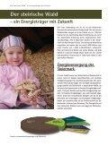 Qualitätsbrennstoffe für jedermann - Biomassehöfe Stmk - Seite 4