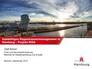 Zukünftiges Regenwassermanagement in Hamburg – Projekt RISA Olaf Simon