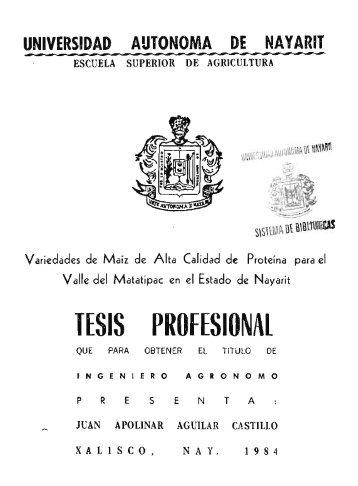tesis profesional - Catalogo General UAN - Universidad Autónoma ...