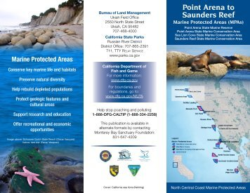Point Arena to Saunders Reef