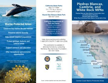 Piedras Blancas Cambria and White Rock MPAs