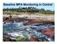 Coast MPAs Rocky Intertidal