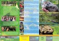 GTL Folder '11.indd - Grüne Insel