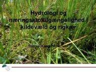 Hydrologi og næringsstoftilgængelighed i kildevæld og rigkær