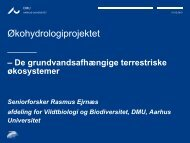 Økohydrologiprojektet
