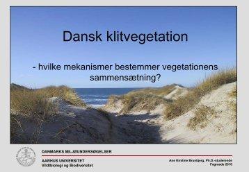 Dansk klitvegetation