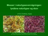 Mosser i naturtypeovervågningen lysåbne naturtyper og skov
